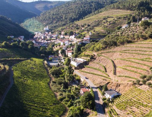 Porto Wine Day 2017